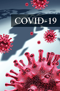 COVID-19: The Impact in India (Recorded Webinar) Banner